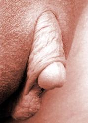Смотреть разные вагины фото, отсос брюнетки в туалете